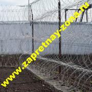 Buy barbed wire concertina