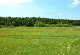 Sell land plot in a picturesque location
